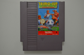 NES Tecmo Cup Football Game