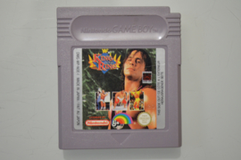 Gameboy WF King of The Ring