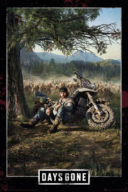Days Gone Poster (61x91cm) - Pyramid International