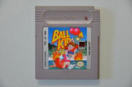 Gameboy Balloon Kid