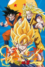 Dragonball Z Poster Goku Evolution (40x50cm) - ABYStyle
