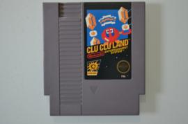 NES Clu Clu Land - Blackbox