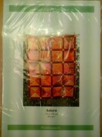 Csquiltdesigns Astern