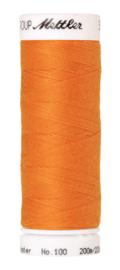 0122 Pumpkin