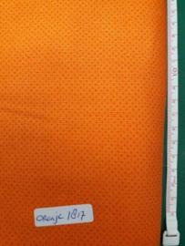 1817 Wit Oranje