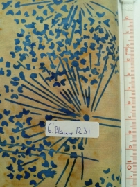 1231 Grijs Blauw