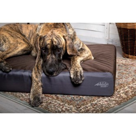 Orthopedisch Hondenkussen Scruffs Armourdillo Bruin-Gratis Verzending