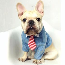 Halsketting & Stropdassen voor honden