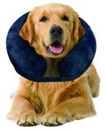 Opblaasbare halsband voor verwondingen, uitslag of na de operatie