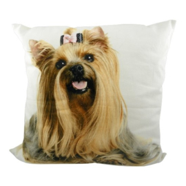 CANVAS YORKSHIRE TERRIER GIRL  MARS&MORE