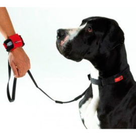 Patento Pet Hands Free Leash