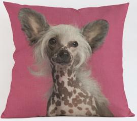 Kussenhoes Chinese Naakthond