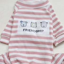 Hondenpakje Vriendschap Roze - Small - Ruglengte 20-21 cm - In Voorraad