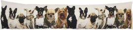 TOCHTKUSSEN CANVAS chihuahua-franse bulldog  en yorkshire- GRATIS VERZENDING