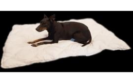 Dekbed voor honden  100X75 CM OP=OP