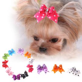 haar strikjes voor de hond Polka -  10 stuks