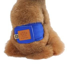 Plasband Uni Dogstyle - Medium - Taille 34-39 cm - In voorraad