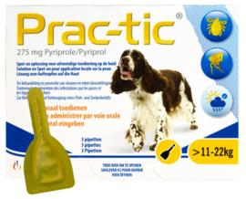 Prac-Tic Teek&Vlo (11-22 kg) 3 pipet- Gratis Verzending
