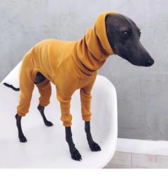 Hondenpakje Petfashion Geel S t/m 5XL