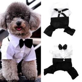 Hondenpakje Taxido S