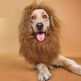 Hondenpruik Leeuw - Large - 40 cm - IN VOORRAAD