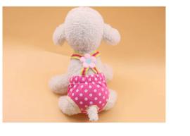 Loopsheid pakje Roze Dots - Maat S - Ruglengte 24-26 cm - In Voorraad