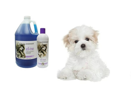 Honden shampoo All Systems Self Rinsing