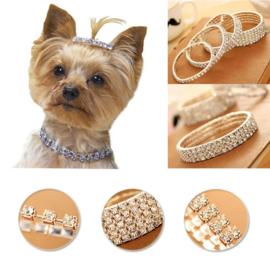 Halsketting voor Honden