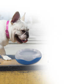 Waterbak voor honden AFP CHILL OUT-COOLER BOWL