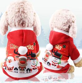 Honden Kerstpakje - Maat S - Ruglengte 25 cm - In Voorraad