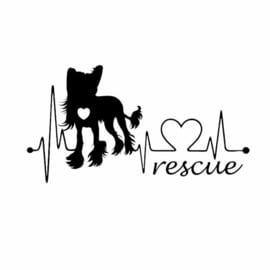 Auto bumper Sticker Chinese Naakthond Rescue