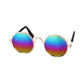 Hondenbril Regenboog