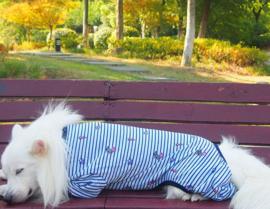 Honden pyjama Blauw Do 2XL