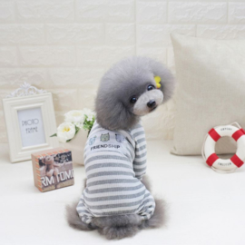 Honden Pakje Vriendschap Grijs - Medium - Ruglengte 25 cm - In Voorraad