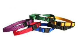 Puppyhalsbandjes setje 6 kleuren