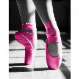 Ballerina Feestje.