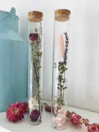 Tube met droogbloemen zalm/roze