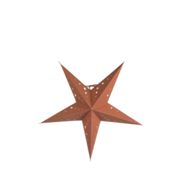 Thuuz Decoratie Ster M Terra