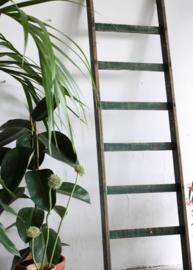 Oude houten ladder - Donkergroen