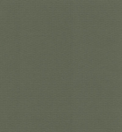 papicolor olijf groen A4 (5pk)
