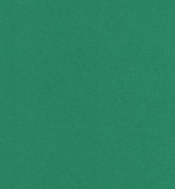 papicolor donker groen A4 (5pk)