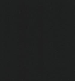 papicolor ravenzwart  A4 (5pk)
