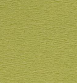 papicolor mosgroen A4 (5pk)