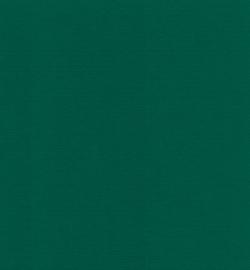 papicolor kerst groen A4 (5pk)