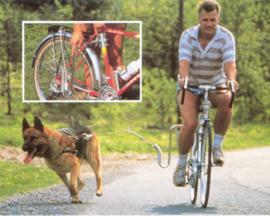 Hond / Voor aan de fiets
