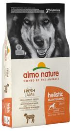 Almo Nature Holistic Dog L Lam & Rijst 12 kg