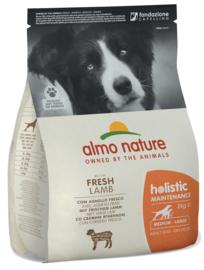 Almo Nature Holistic Dog M Lam & Rijst 2 kg