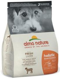 Almo Nature Holistic Dog S Lam & Rijst 2 kg