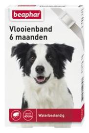 Beaphar Vlooienband 6 Maand Hond Wit