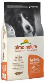 Almo Nature Holistic Dog M Zalm & Rijst 12 kg